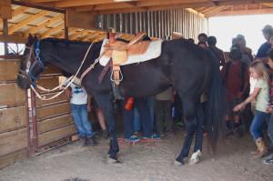 horsebackriding1-sept2013